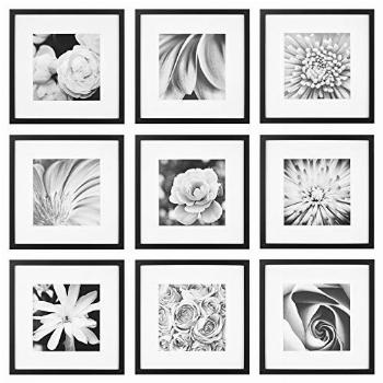 Gallery Perfect Gallery Wall Kit Square Photos with Hanging