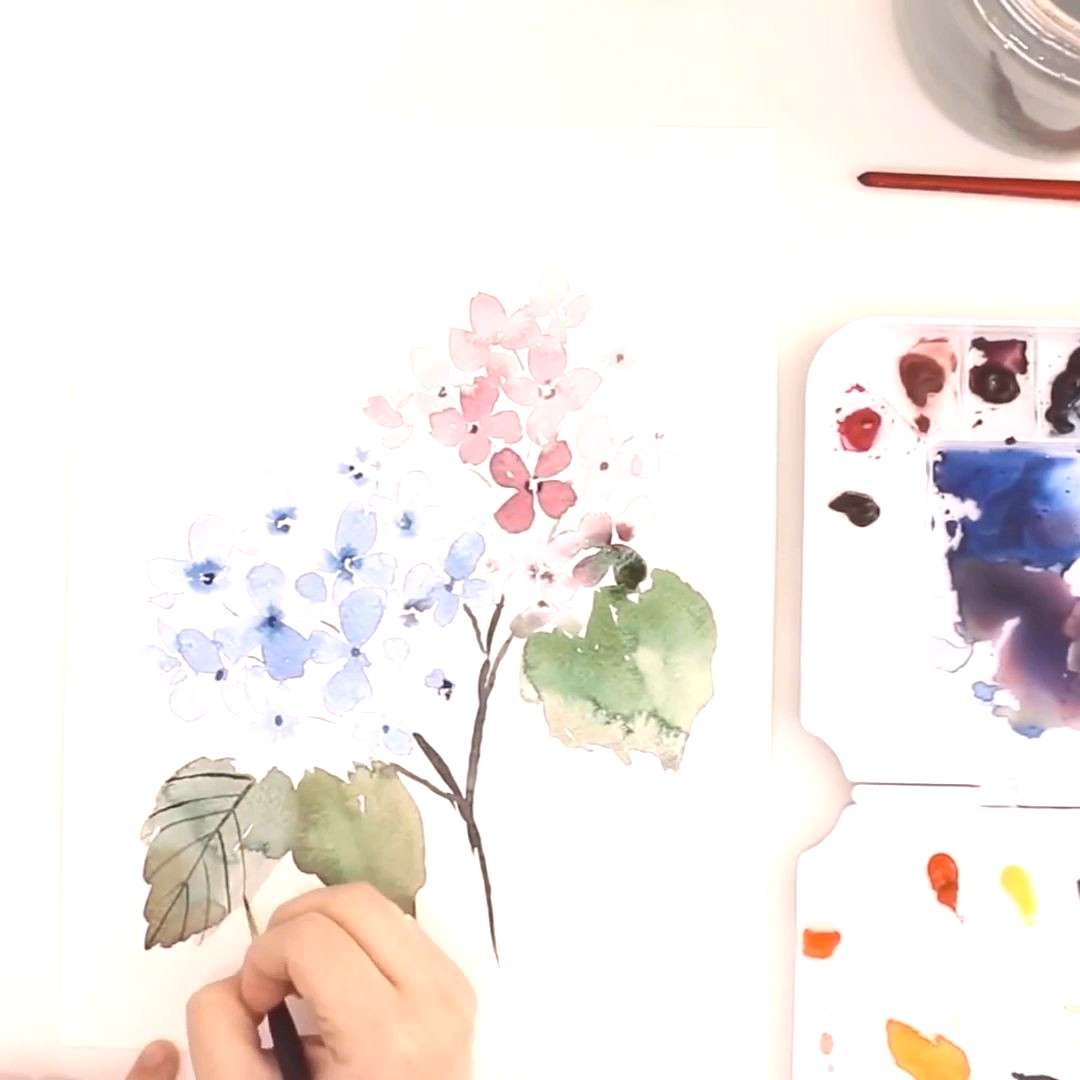 Beginner Tutorial | How to paint Watercolor Hydrangea - YouTube Learn how to paint a loose watercol